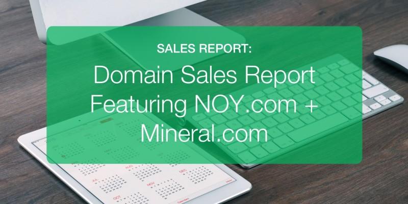 Domain Sales Report