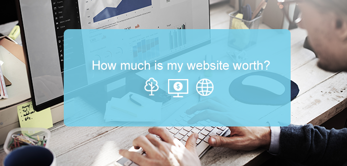 How Much Is My Website Worth? Website Valuations Guide