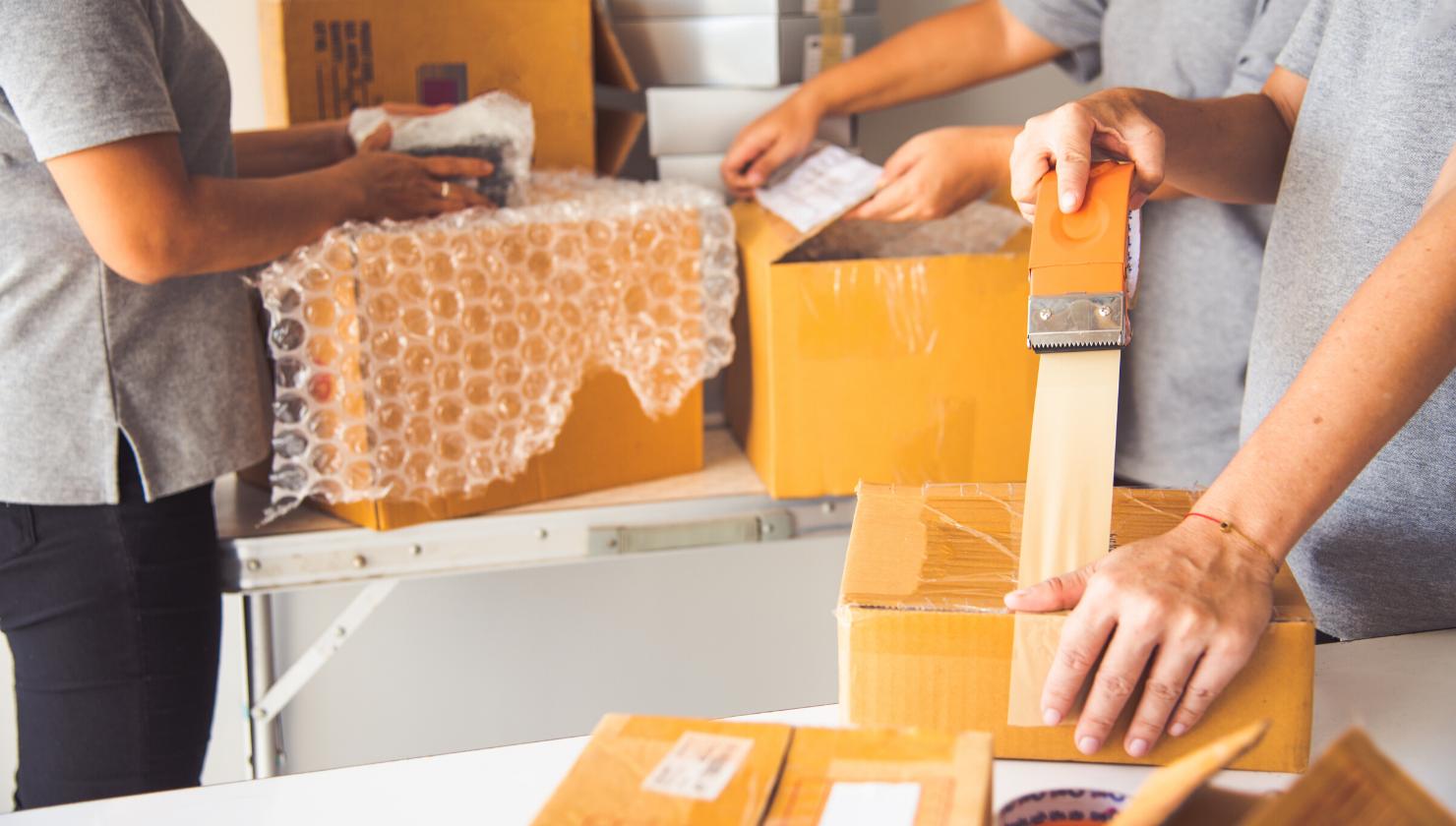 ebay drop shipping flippa
