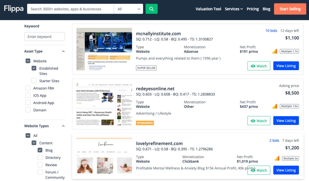 buy a blog on flippa
