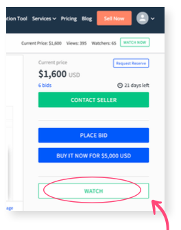 FTBG Watch seller Flippa